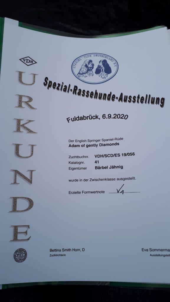 Das-unter-Ausstellungen-beim-Adam-am-06.09.20-in-Fuldabrueck-V1-mit-Anw.-und-CAC-Res..